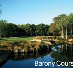 Barony Course